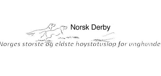 norskderbylogo
